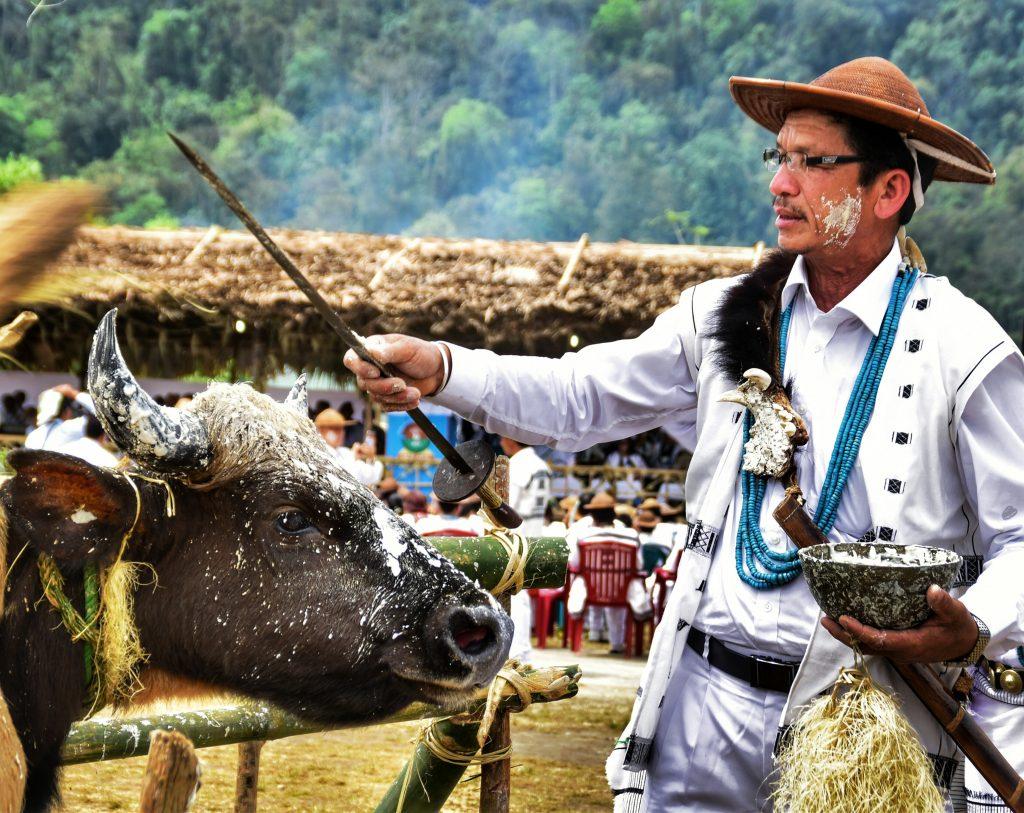 Lockdown festival in Nagaland and Arunachal