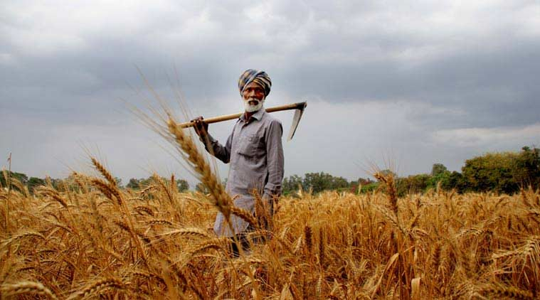 Assam Farmers face huge losses due to Lockdown