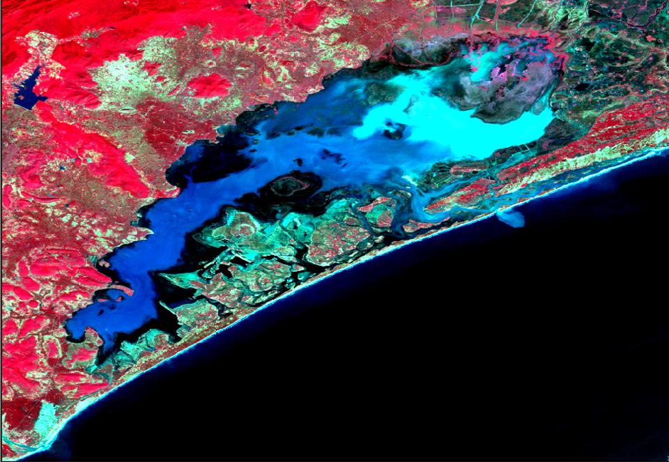Satellite image of CHilika lake