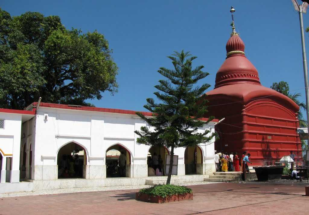 Tripura sundari temple opens for devotees